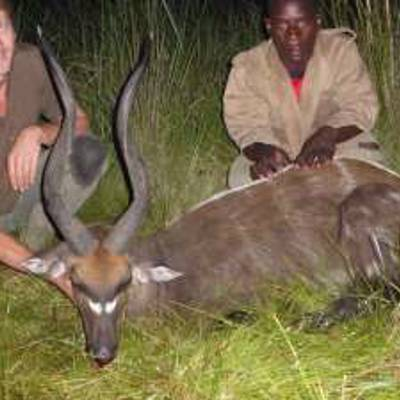 Dwarf Buffalo & Plains Game Hunt 2020