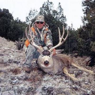 Mule deer archery hunting