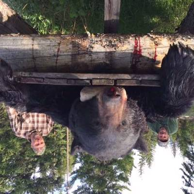 Spring Black Bear Hunt '20