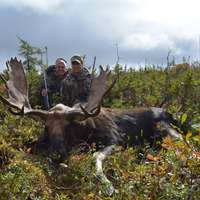 Fly-in Eastern Canadian Moose Hunt 2x1
