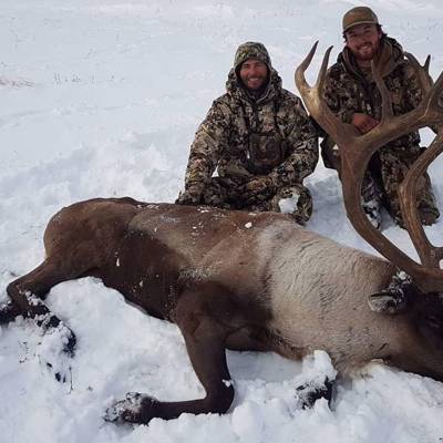 Canadian Moose/Caribou Combo Hunt