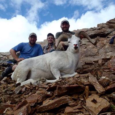 Dall Sheep Hunt in Central Alaska '21