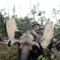 Fly In Moose Hunt