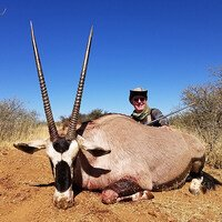 Red Hartebeest, Gemsbuck & Warthog Pack