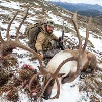 Mountain Caribou Hunt 2022