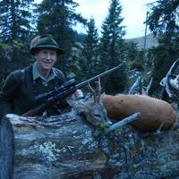 Roe deer 1x1 Hunt in Austria
