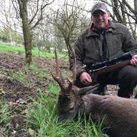 Roe Buck Stalking in Scotland