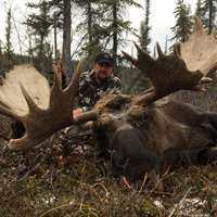 Wow!!  Cancellation Moose Hunt 1x1