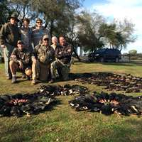 Duck hunting close to Buenos Aires