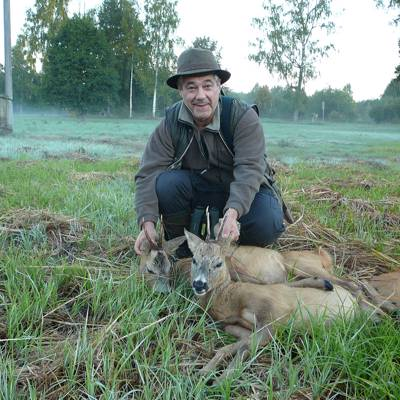 Roe Buck and Wild Boar in Latvia