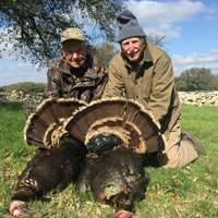 Fall Turkey Hunt 19/20