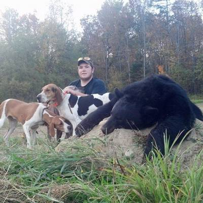 Black Bear Hunt with hounds