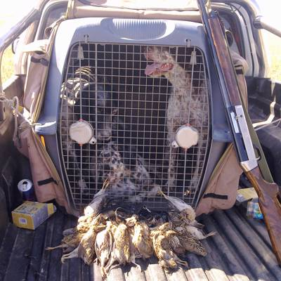 Quail Hunt All Inclusive min. 3 hunters