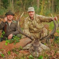 Red stag hunt 1x1
