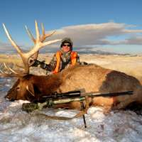 7 Day Archery / Rifle Elk Hunt 2020
