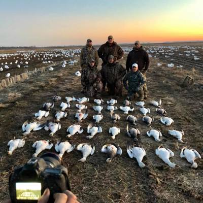 Snow Goose Unforgettable Experience!