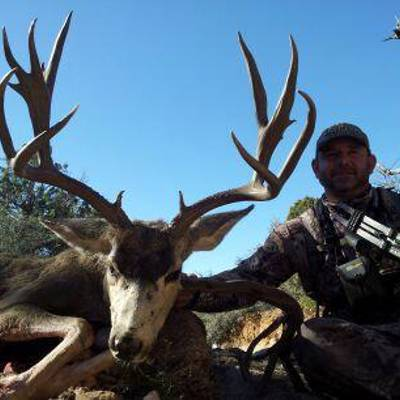 7 Day Arch. Mule Deer Hunt (Rut Hunt #4)