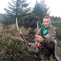 Free-Range Hunting in Ireland