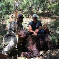 5 Day Bear Hunt