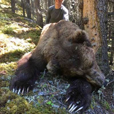 Grizzly Combo Hunt 1 on 1 Wk 3 - 4
