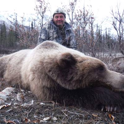 Grizzly, Moose hunt