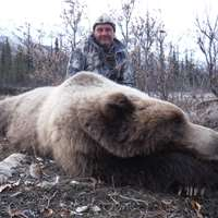 Moose, Grizzly hunt