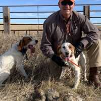 Upland Game Birds Hunt 2019